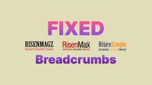 Fixed Breadcrumbs Warning on Google Search Console for Templates RisenMagz, RisenMax & Risen Simple